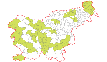 Map of Slovenia with all municipalities (yellow colour), that participated in the project